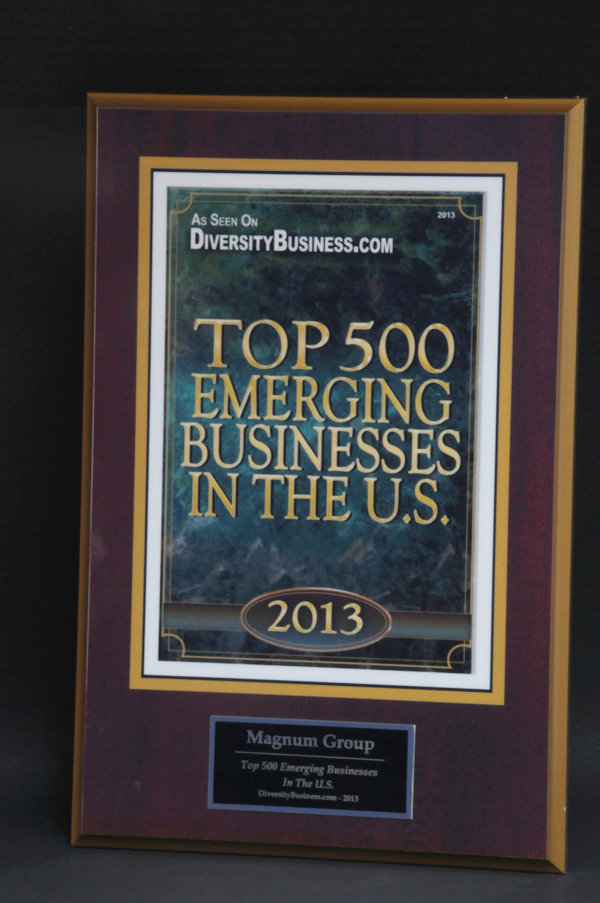 Top 500 Emerging Businesses in the USA